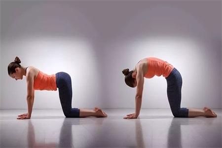 女性想要青春永驻,练习这四组瑜伽姿势就对了