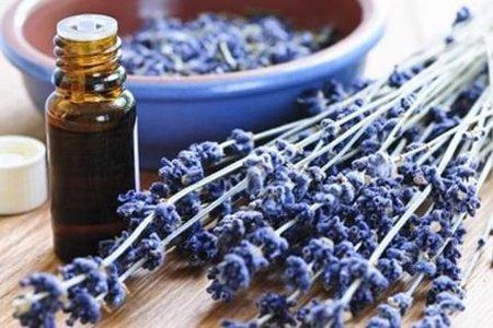 薰衣草精油的美容功效,正确的美容护肤方法