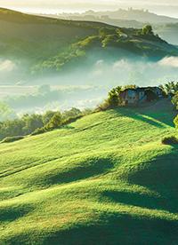 绿色大草原高清图片欣赏