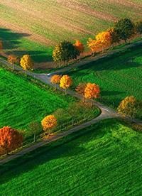 绿色唯美大草原图片大全
