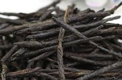 散热清火,促进睡眠之苦丁茶的功效与作用