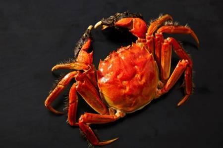 死蟹到底能不能吃 吃不完的螃蟹要如何保存怎样区